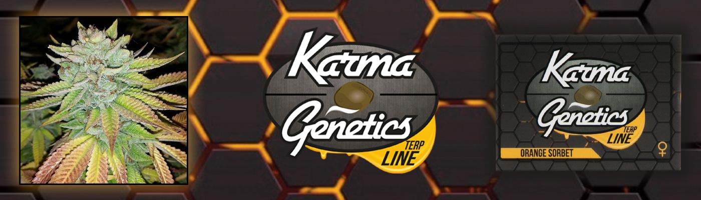 Karma Genetics Terp Line