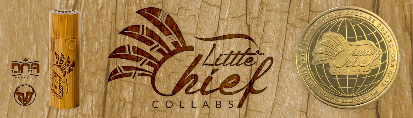 Little Chief Collabs