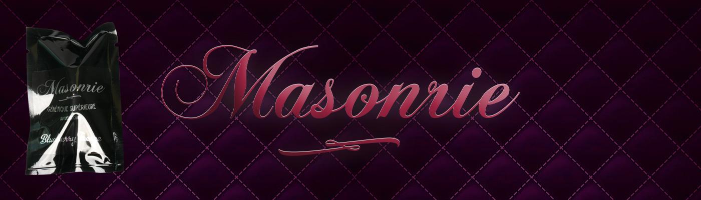 Masonrie Genetics