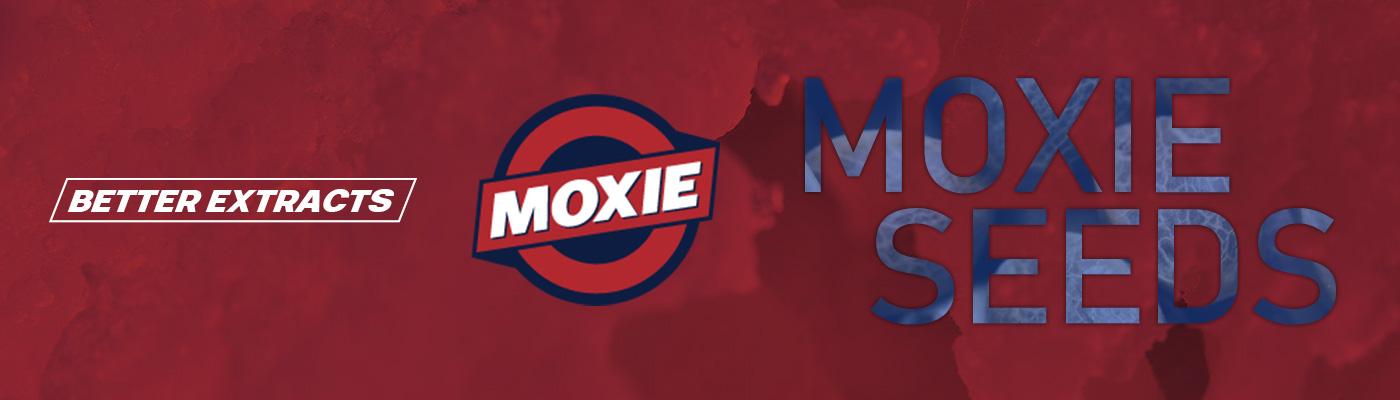Moxie Seeds