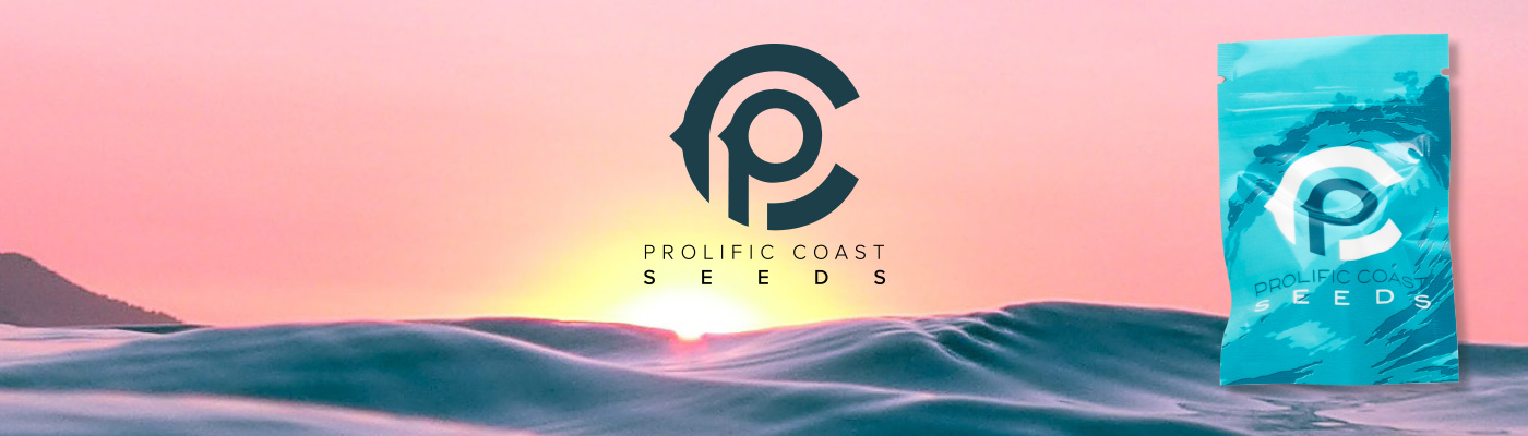 Prolific Coast Seeds