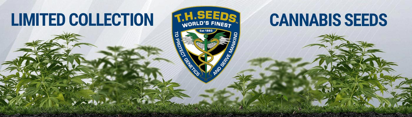 TH Seeds - Limited Collection