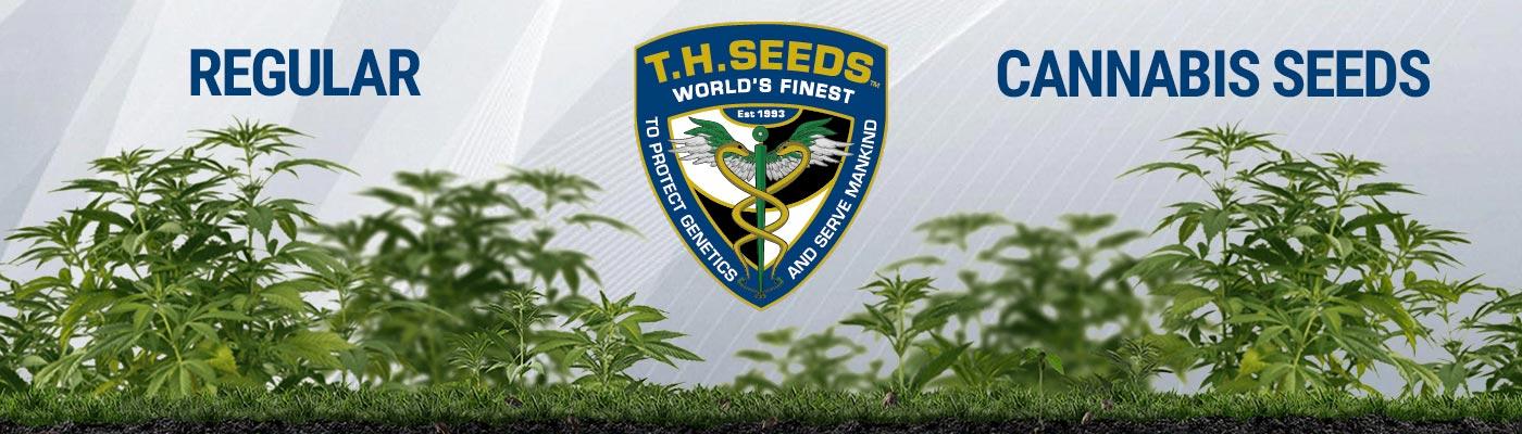 TH Seeds - Regular Cannabis Seeds