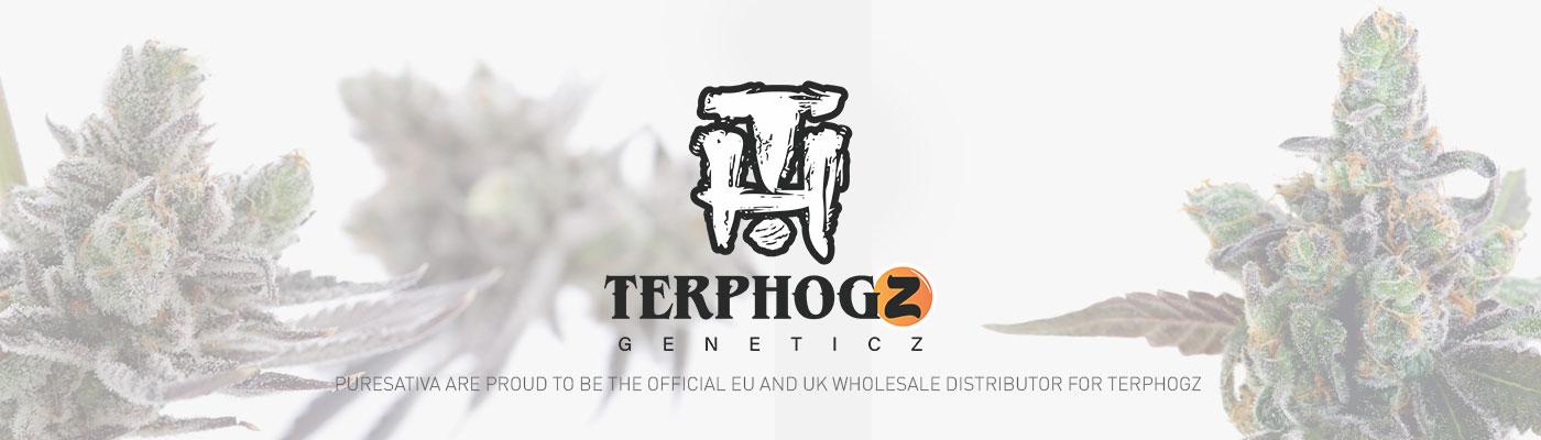 TerpHogZ GeneticZ - ZkittleZ