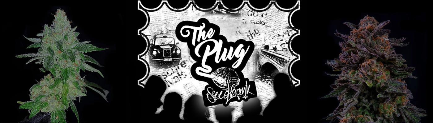 The Plug Seedbank