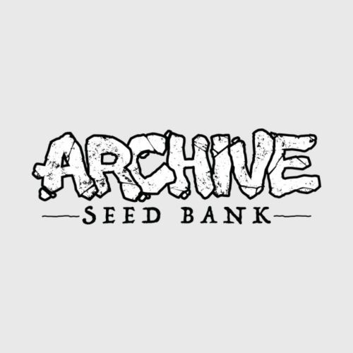 Rose Gold Female Cannabis Seeds by Archive Seedbank