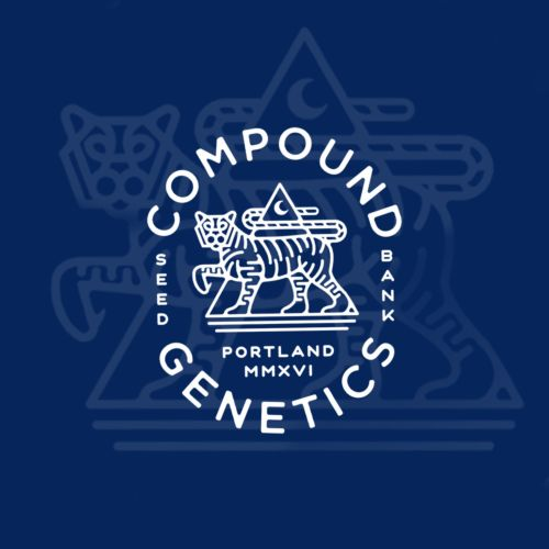 Enzo Regular Cannabis Seeds by Compound Genetics