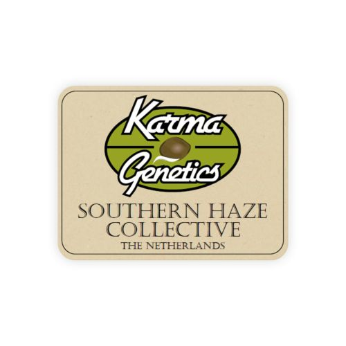 A5Haze S1 Female Cannabis Seeds by Karma Genetics Southern Haze Collective