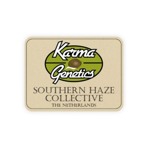 BA#75 Haze Female Cannabis Seeds by Karma Genetics Southern Haze Collective