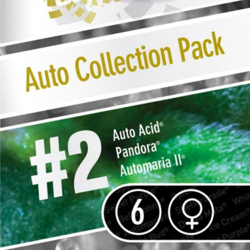 Auto Collection Pack 2 by Paradise Seeds