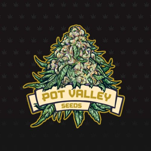 Candy Twist Female Cannabis Seeds by Pot Valley Seeds