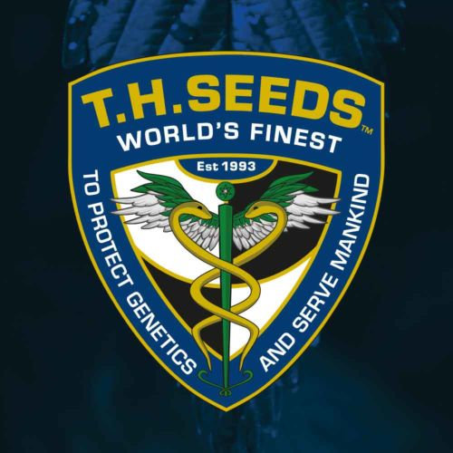 Sour Cake Regular Cannabis Seeds by T.H.Seeds