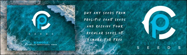 Buy any Seeds from Prolific Coast Seeds and Receive 4 Free Regular Seeds of KSMORZ (Gorilla Glue #4 x Animal Cookies S1)