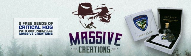 Free Massive Creations Seeds
