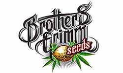 Brothers Grimm Cannabis Seeds