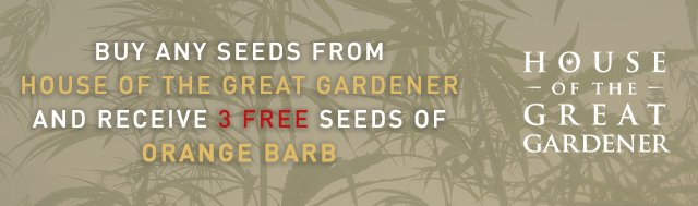 Buy any seeds from House Of The Great Gardener and receive 3 FREE seeds of ORANGE BARB